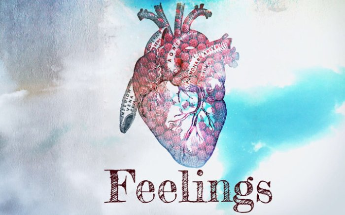 5oak_feelings